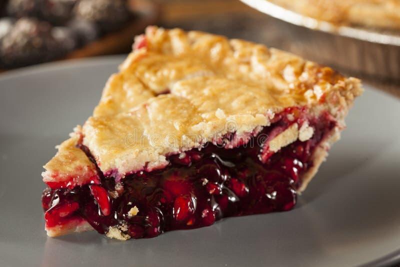Hemlagade organiska Berry Pie royaltyfria bilder
