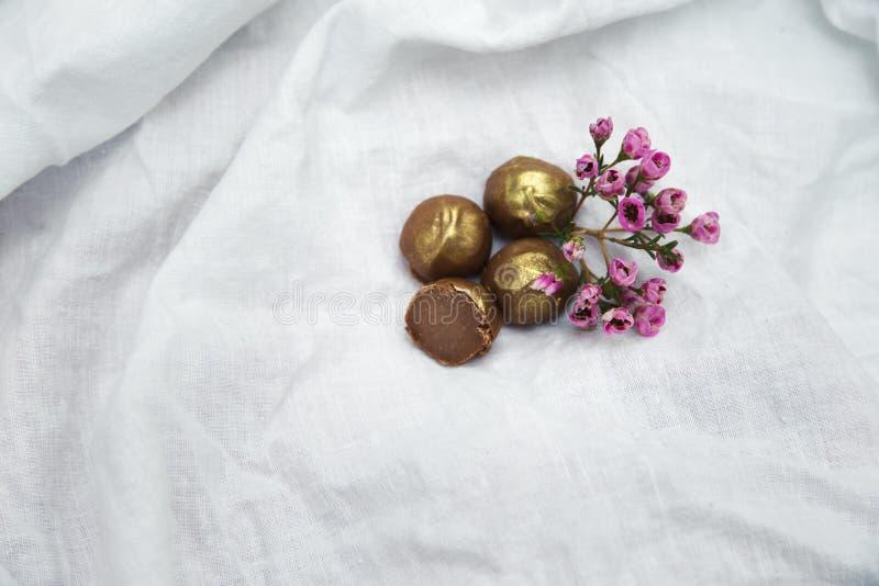 hemlagade tryfflar för choklad Handgjorda sötsaker royaltyfria bilder
