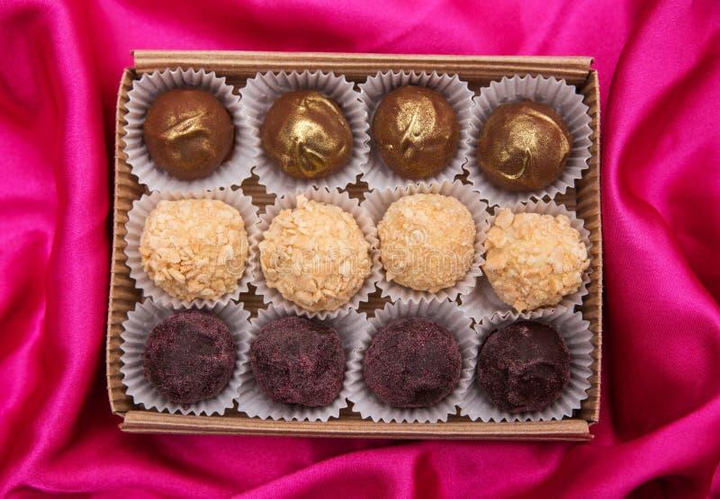 hemlagade tryfflar för choklad Handgjorda sötsaker royaltyfri bild