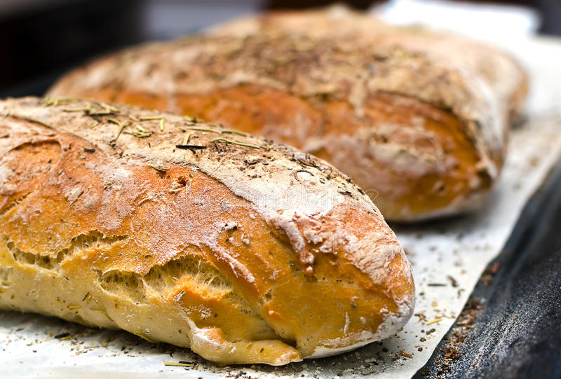 Hemlagat bröd med örter fotografering för bildbyråer