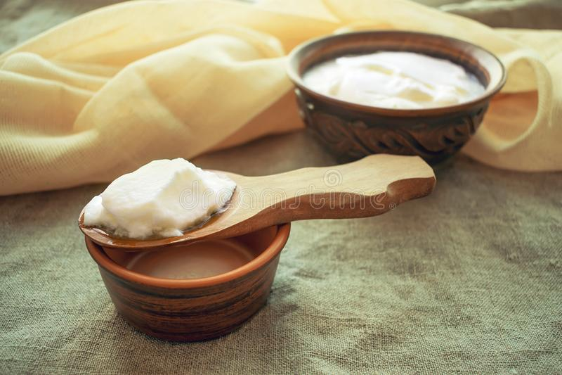 Hemlagat mjölka kefirkorn på en träsked ovanför en lerabunkenolla royaltyfri foto