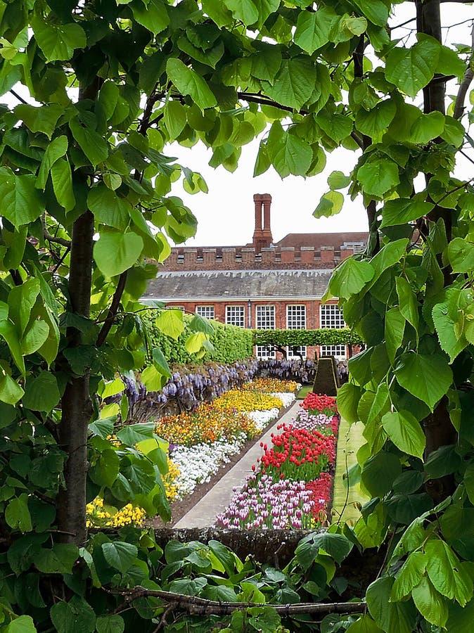 Hemlig trädgård för vår arkivfoton