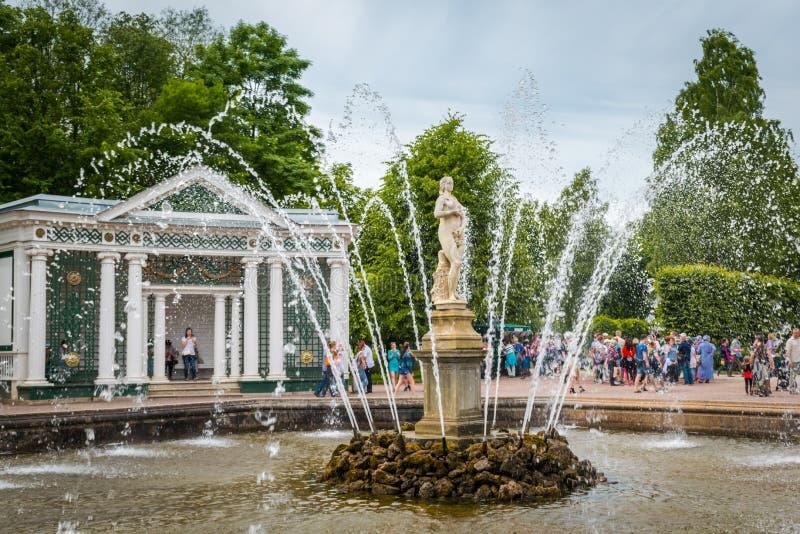 Hemliga springbrunnar i den Peterhof slotten i St Petersburg, Ryssland arkivbilder