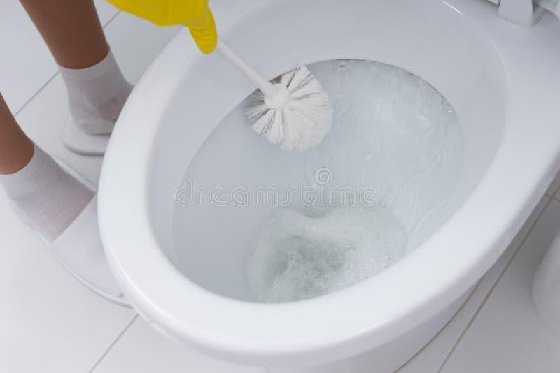 Hemmafruupprensning bunken av toaletten arkivbild