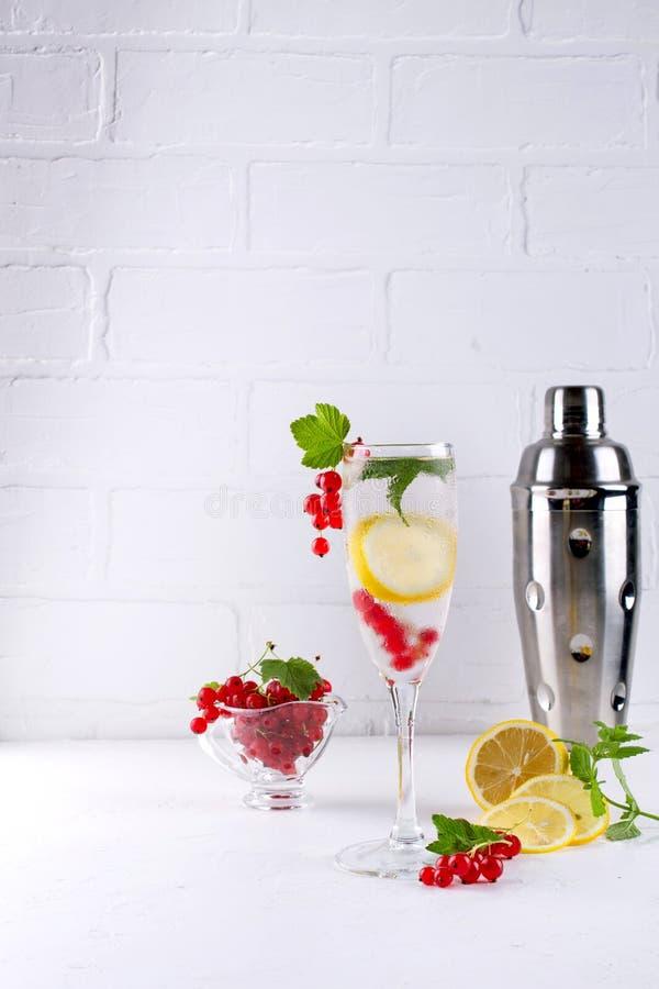 Hemmet gjorde sunt vitaminvatten med citronen och den röda vinbäret royaltyfria bilder