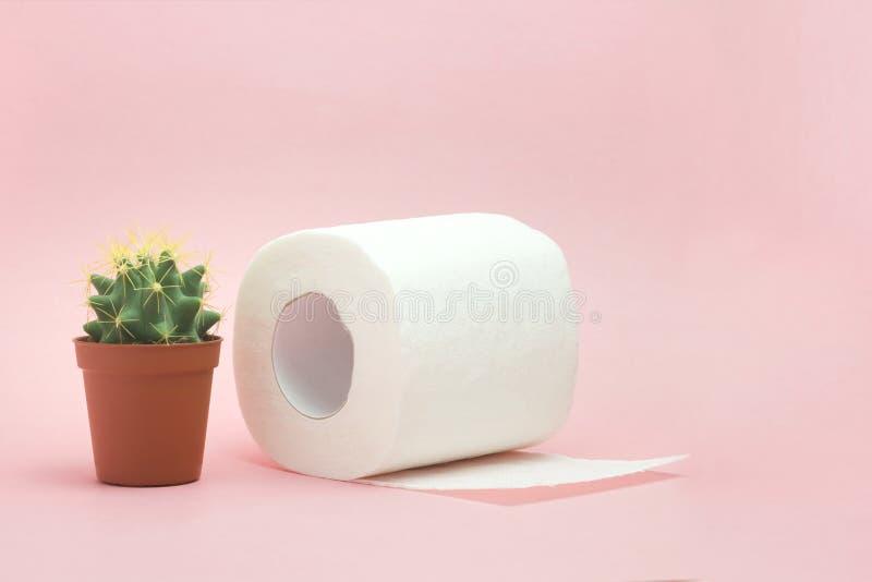 Hemorrhoid, de gezondheidsproblemen van de constipatiebehandeling Toiletpapier een cactus op de roze achtergrond Hemorrhoidproble royalty-vrije stock afbeelding