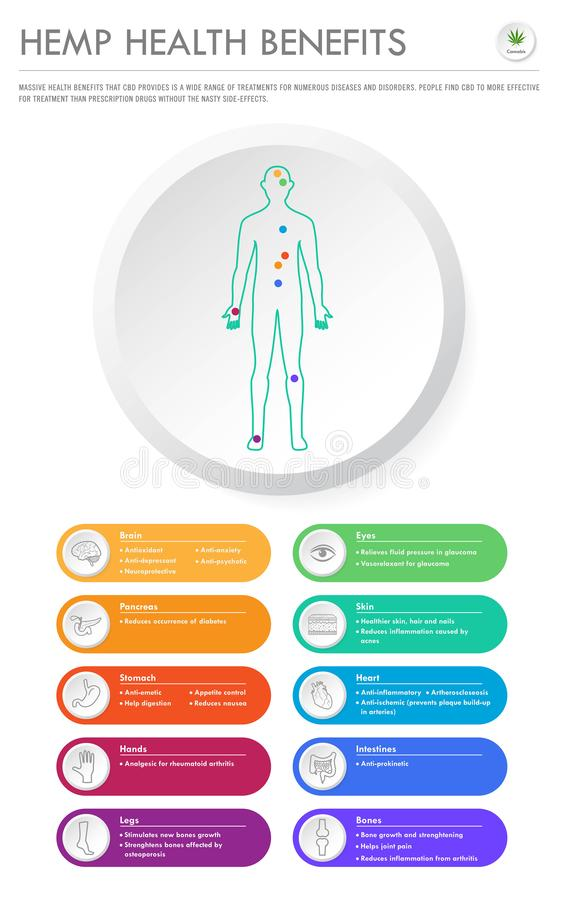 Hemp Health Benefits vertical business infographic. Illustration about  as herbal alternative medicine and chemical therapy, healthcare and medical science vector illustration