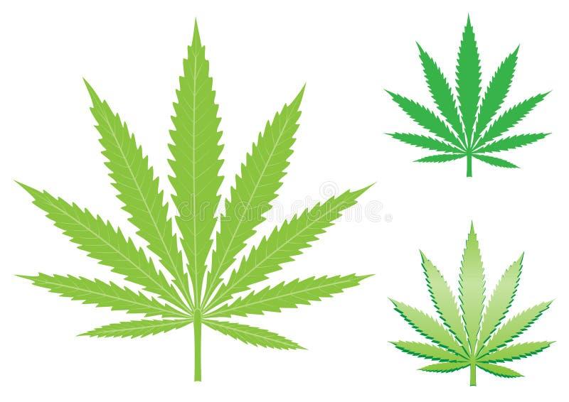 Hemp leaf stock illustration