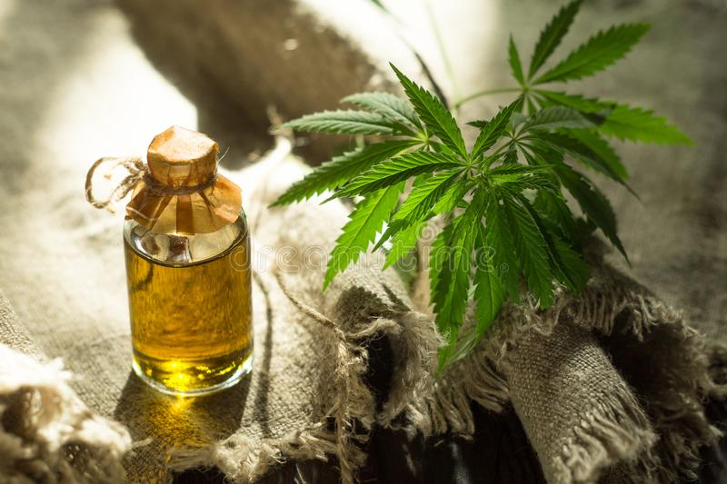Hemp oil and canvas stock images
