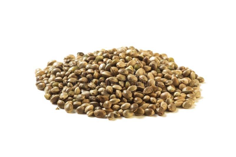 Hemp seeds stock photography
