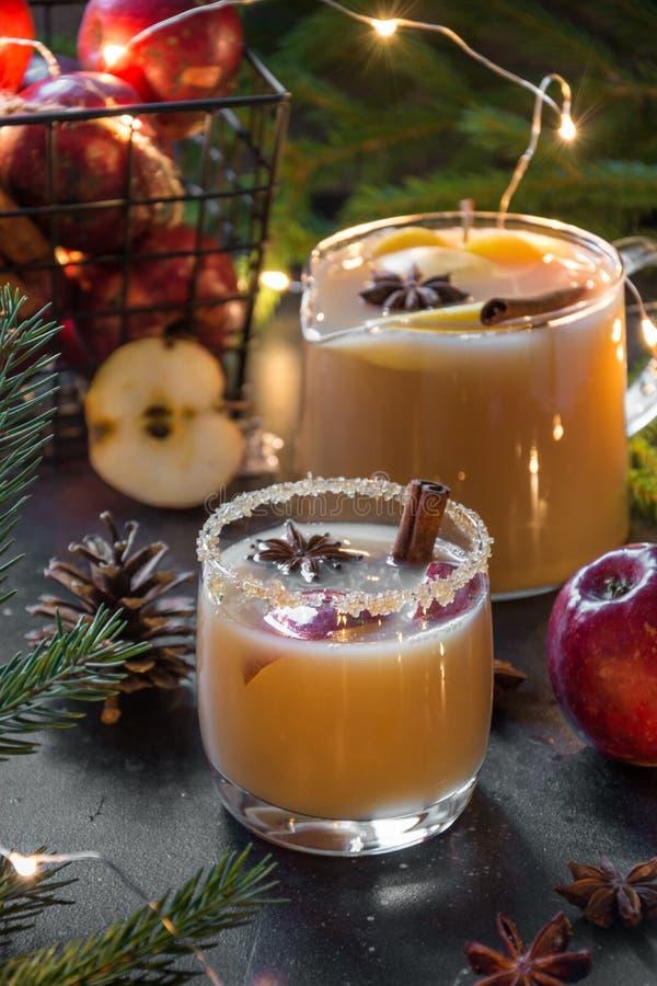 Hemtrevlig äppelcider för jul med kanel-, kardemumma- och stjärnaanis royaltyfria foton