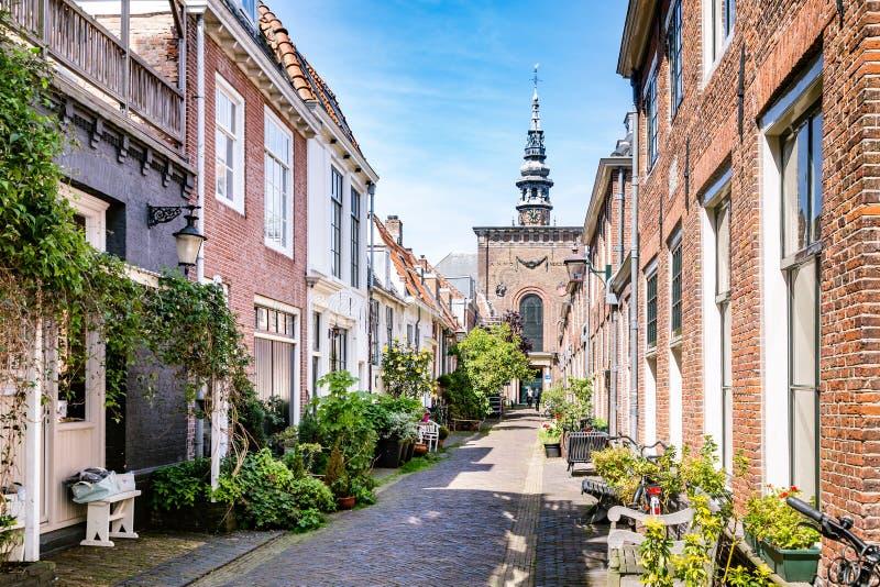 Hemtrevlig grön gata i Haarlem i Nederländerna royaltyfri foto