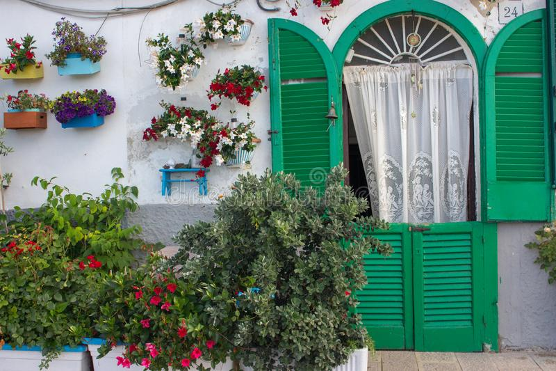 Hemtrevlig trädgård med den vita väggen, den gröna ingången med gardinen och ljusa blommor i krukor Lantlig gårdgarnering fotografering för bildbyråer