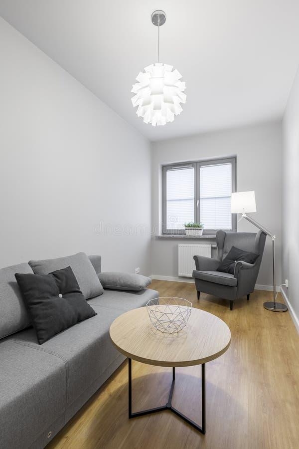 Hemtrevligt grått rum med soffan royaltyfri fotografi
