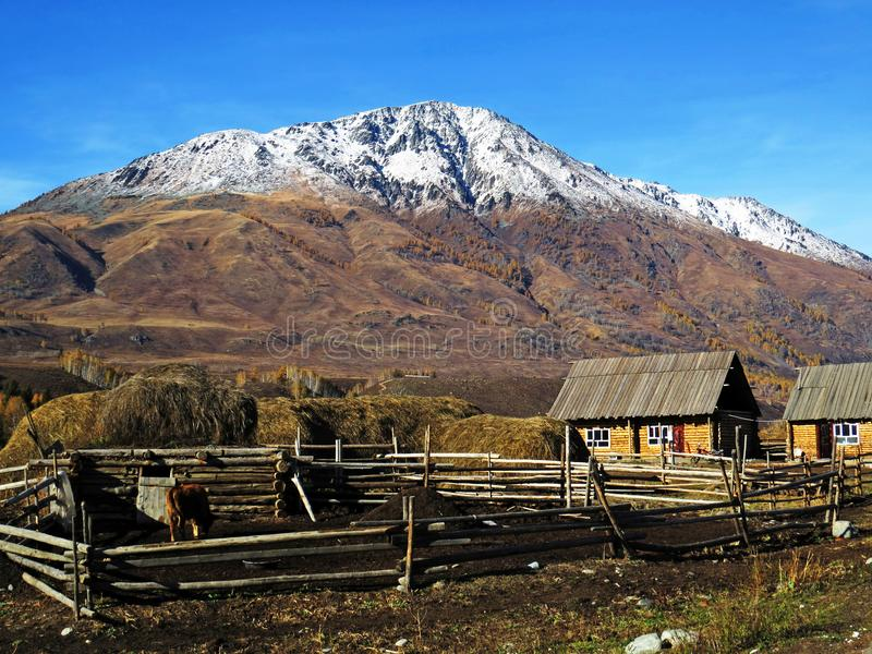 Hemu village in Xinjiang, China. Located within the Kanas Lake scenic area in the north of China`s Xinjiang Uygur autonomous region, Hemu is a rather primitive stock photos