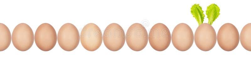 hen's鸡蛋特写镜头照片与蛋壳纹理的连续 一个鸡蛋有复活节兔子耳朵由沙拉叶子制成 无缝 免版税库存照片