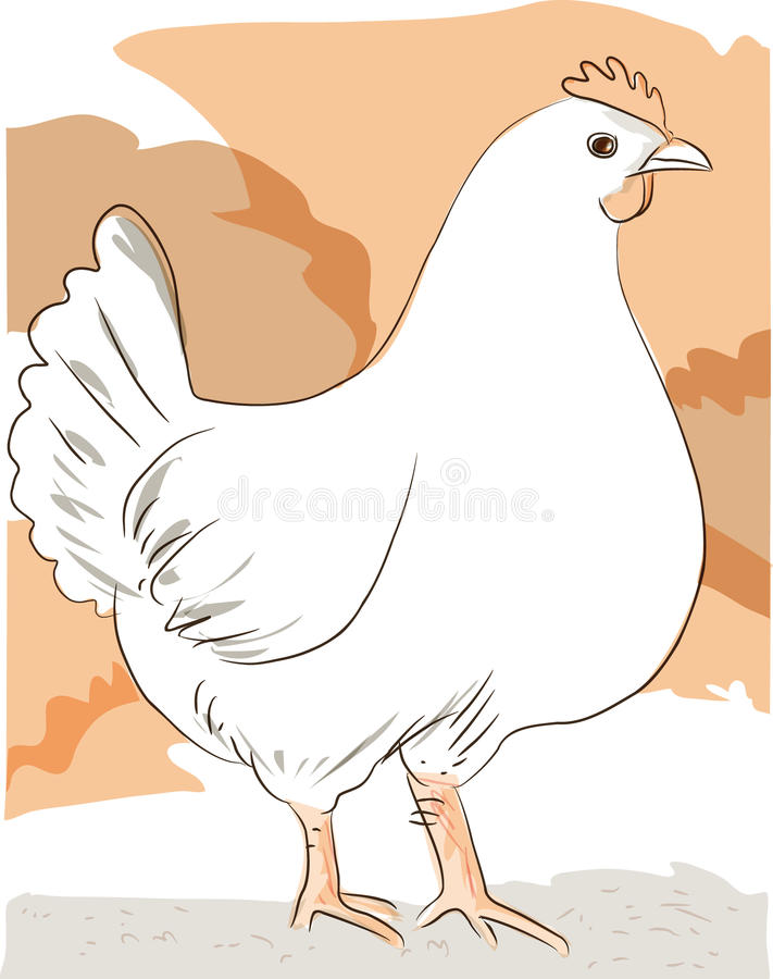 Simple Hen standing against simple background vector illustration