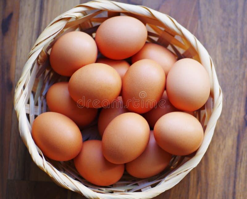 Hen eggs royalty free stock image