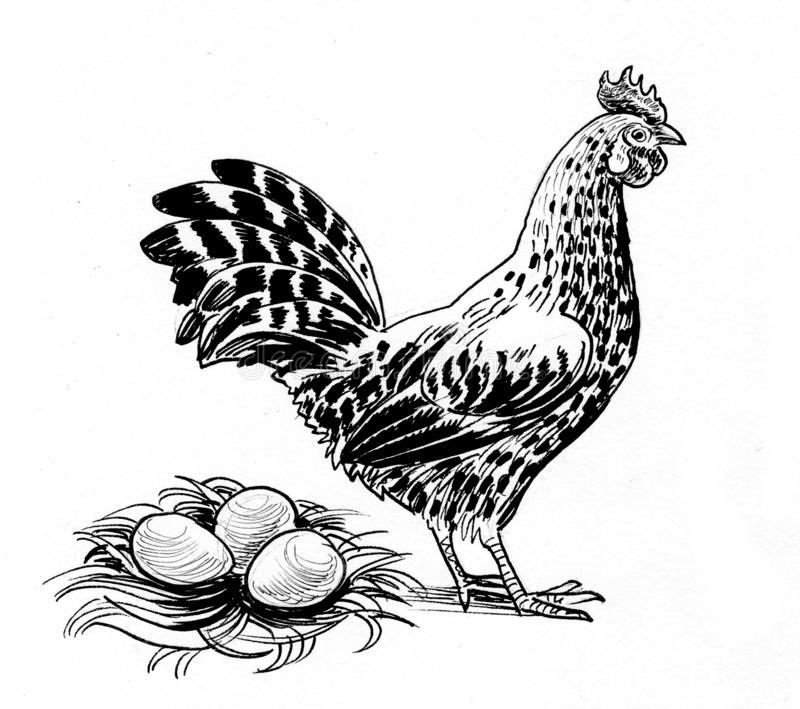 Hen and eggs royalty free illustration