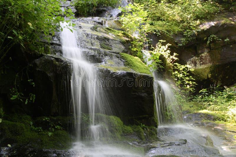 Hen Wallow Falls no grande parque nacional 2 de montanha fumarento imagens de stock royalty free