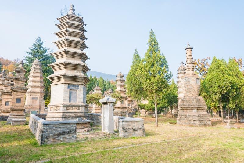 HENAN, CHINA - 9. November 2015: Talin (buddhistischer Pagoden-Wald) in Sha stockfotografie