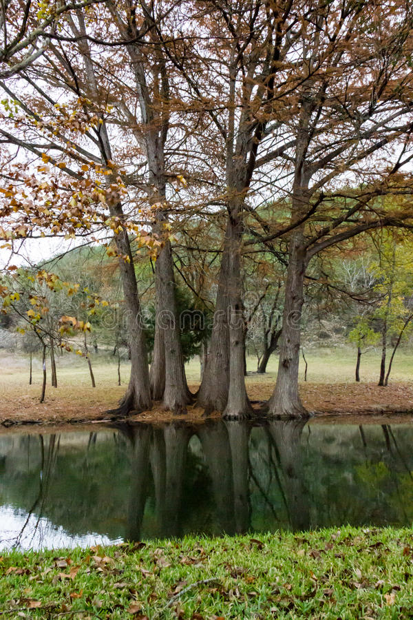 Henderson Creek, Ingram Texas royalty-vrije stock fotografie