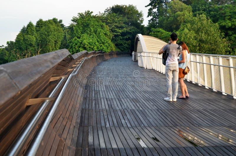 Henderson Waves Bridge Singapore royaltyfri fotografi