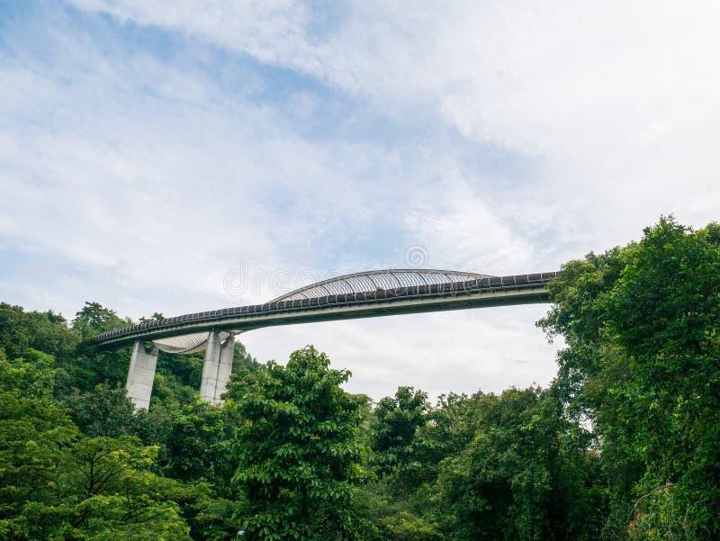 Henderson Waves Bridge Singapore mit dem Kräuseln des gebogenen Stahls stockbilder