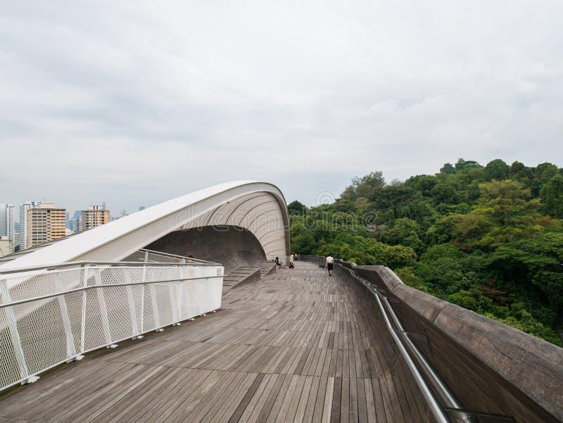 Henderson Waves Bridge Singapore Pedestrian bro royaltyfria bilder