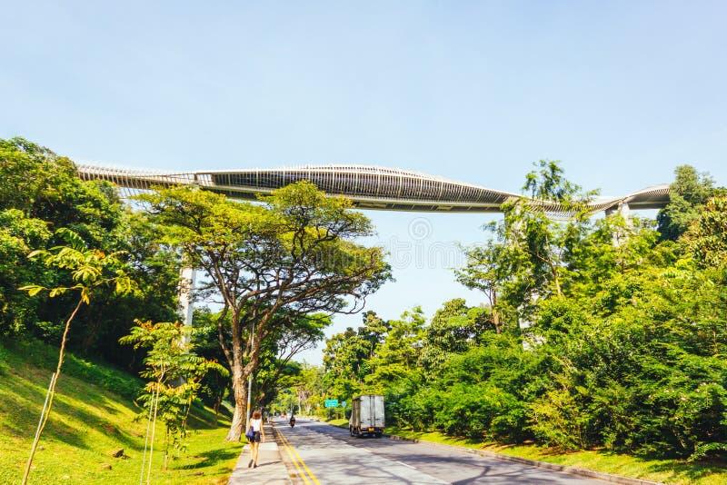 Henderson Waves Bridge, Singapur stockfotos