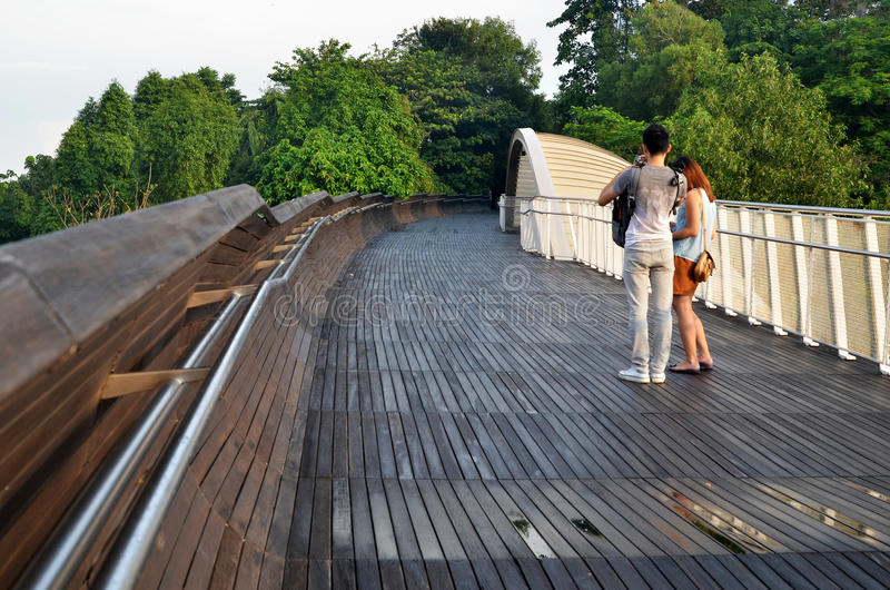 Henderson Waves Bridge, Singapur lizenzfreie stockfotografie