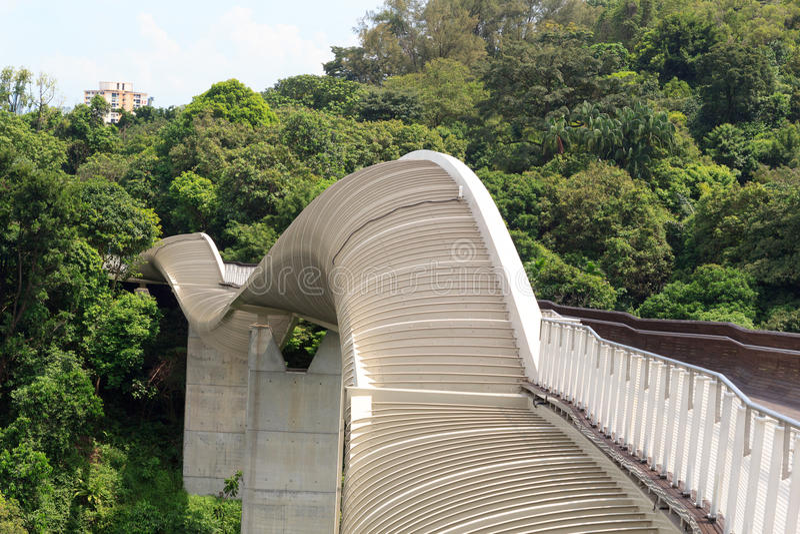 Henderson Waves-brug op het regenwoud van Onderstelfaber royalty-vrije stock foto