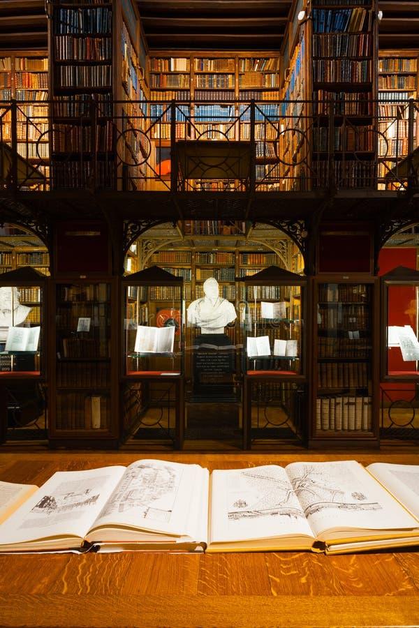Hendrik Conscience Heritage Library Stacks royalty-vrije stock fotografie