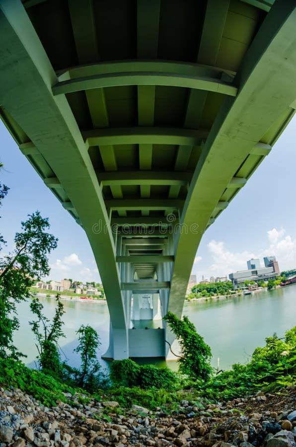 Henley Bridge sopra Tennessee River Knoxville fotografia stock libera da diritti