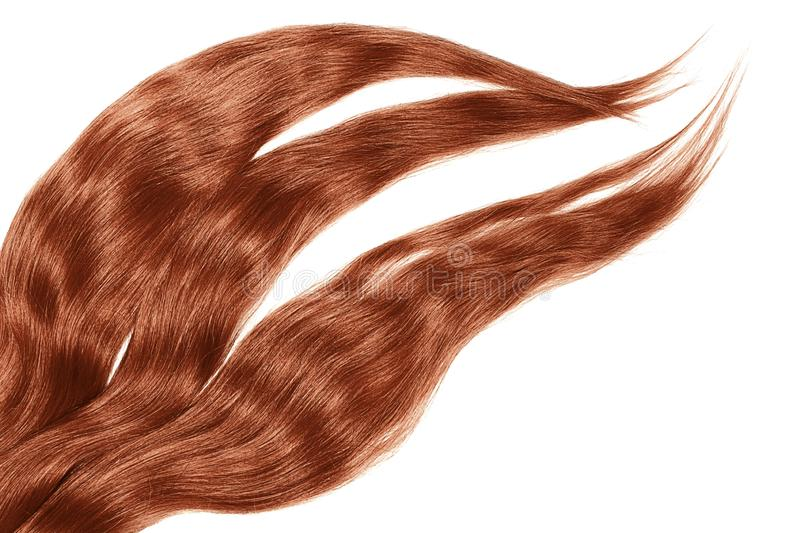 Henna hair isolated on white background. Long disheveled ponytail. Natural healthy hair isolated on white background. Detailed clipart for your collages and stock image