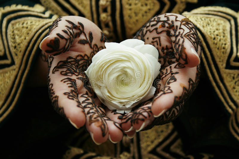 Henna hands. Holding a white flower stock photos