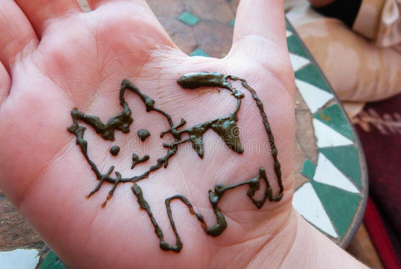 Henna kitty stock photography