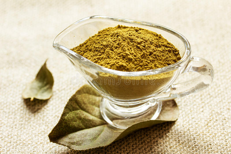 Henna powder in a glass cup. Soft focus. Henna powder in a glass cup. Focus on the powder royalty free stock photo