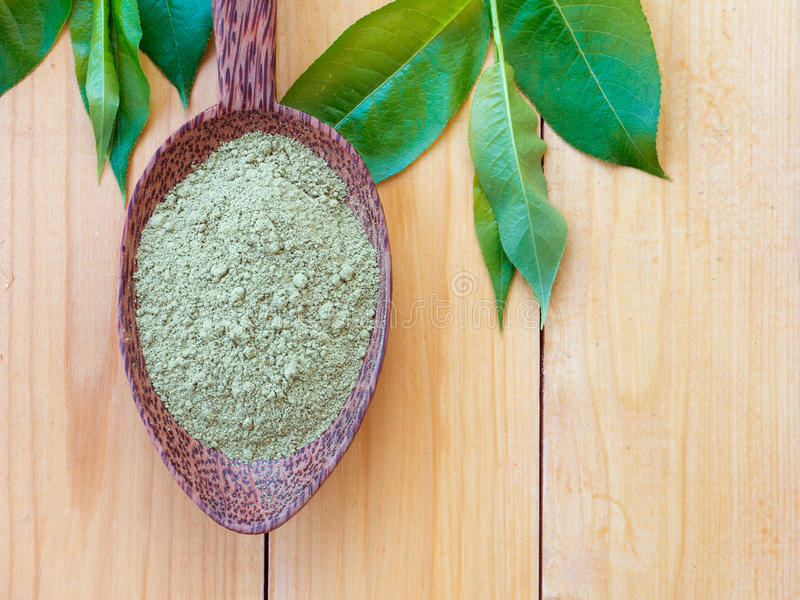 Henna powder in the spoon. Henna powder in the coconut spoon and green leaves stock photography