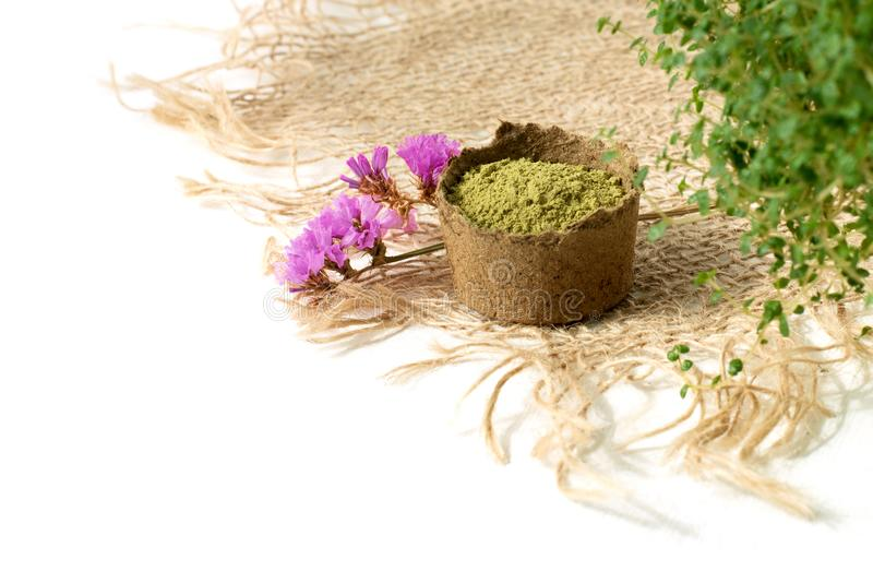 Henna proszek dla farbować, rysunkowy mehendi na rękach i, z zielonymi liśćmi, menchia kwiatami i parciakiem, obrazy stock