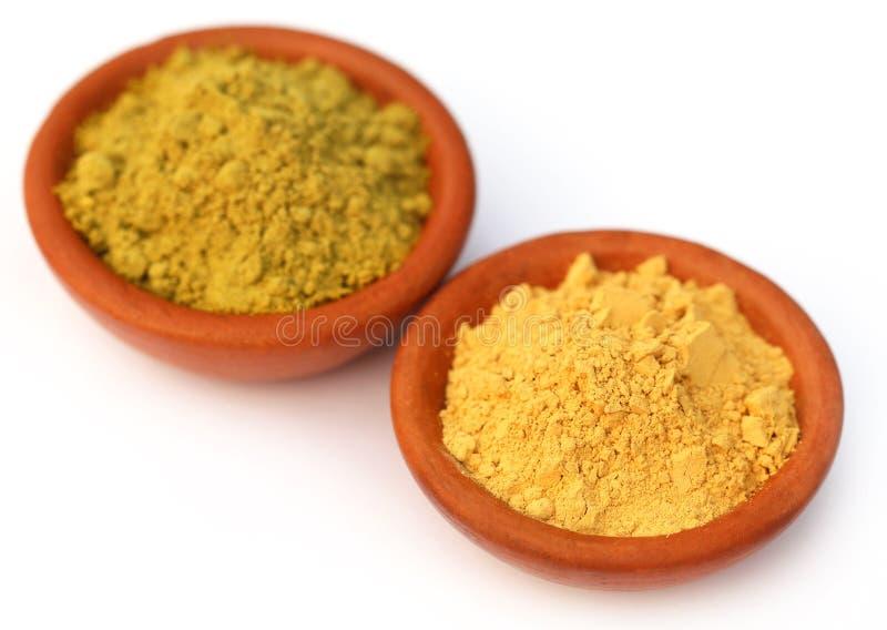 Henna And Sandalwood Powder Stock Image