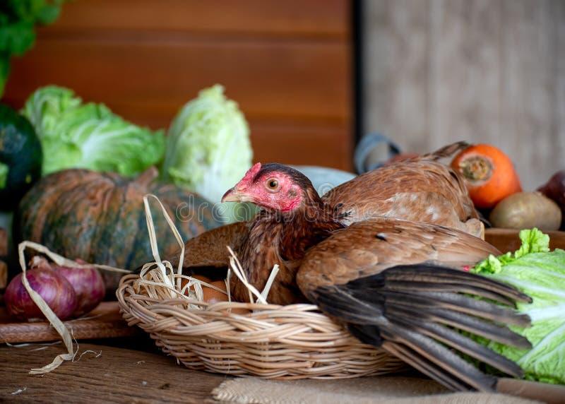 Henne im Korb mit Eiern unter den verschiedenen Arten des Gemüses auf Tabelle in der Küche stockfotografie