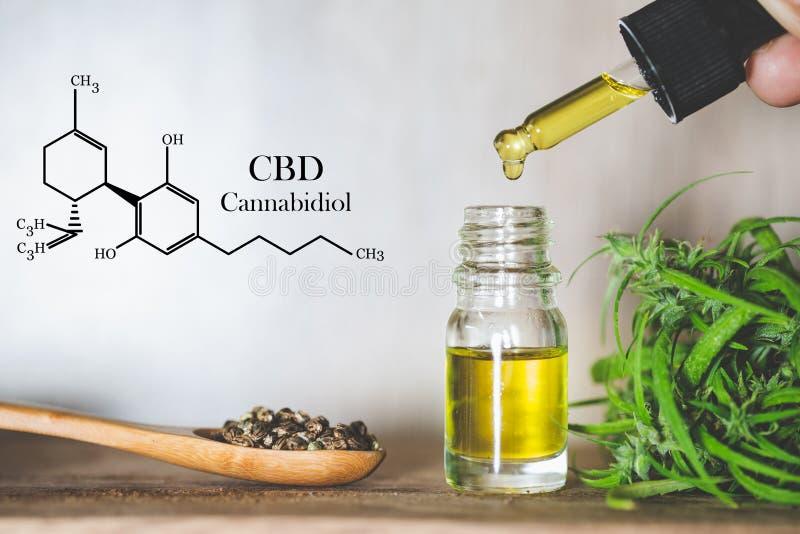 Hennepolie, CBD-chemische formule, Cannabisolie in pipetten en hennepzaden in een houten lepel, concept medisch kruid royalty-vrije stock fotografie