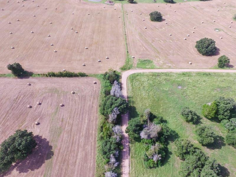 Heno de la bala del campo de la pradera de las tierras de labrantío de Tejas de la visión aérea el día soleado fotografía de archivo