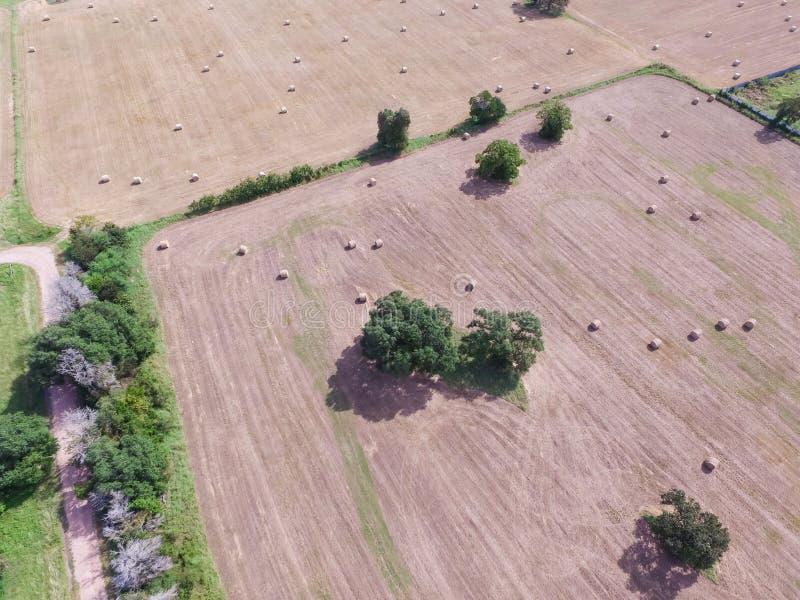 Heno de la bala del campo de la pradera de las tierras de labrantío de Tejas de la visión aérea el día soleado imagen de archivo libre de regalías