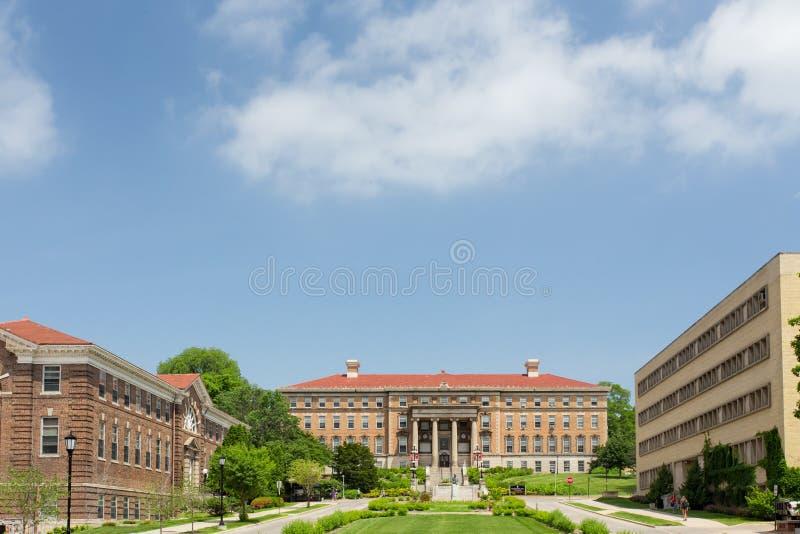 Henry Mall på universitetsområdet av universitetet av Wisconsin royaltyfria foton