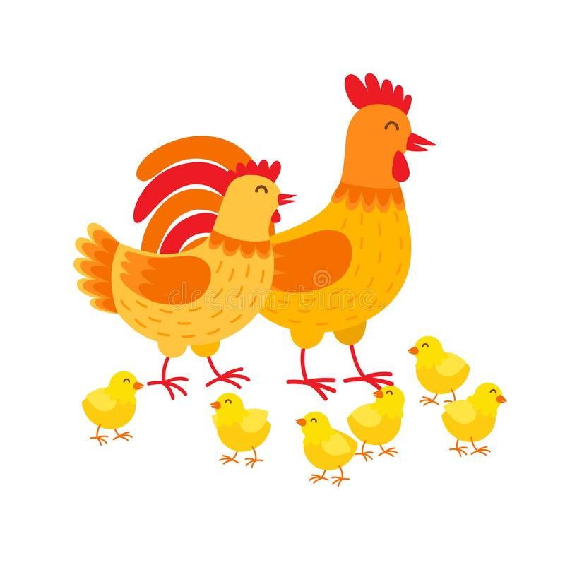 Hens family cute cartoon characters. Hen, rooster and chickens isolated on white background. Happy chicks vector vector illustration