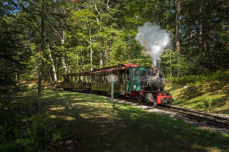 Henschel & carrozze ferroviarie di tirate del motore del figlio fotografia stock libera da diritti