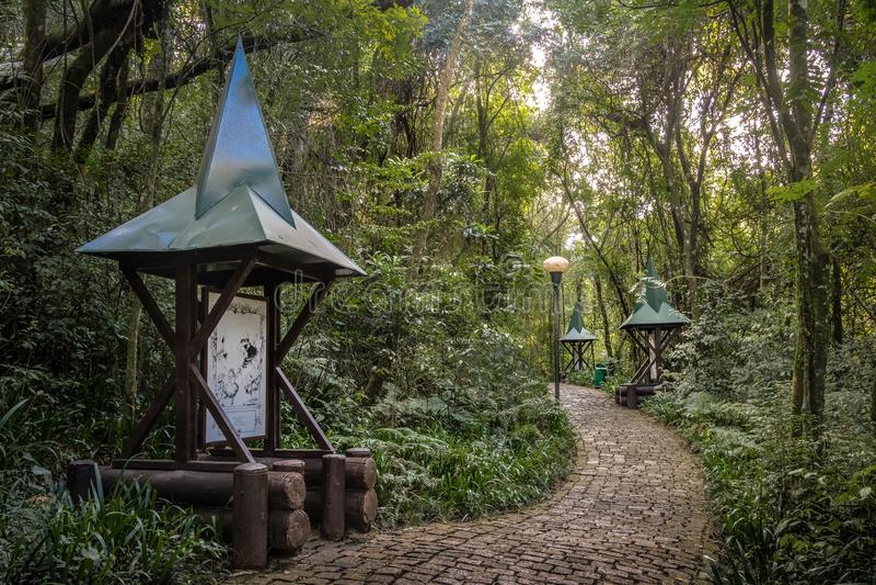 Hensel и Gretel отстают Trilha Joao e Марию немца Forest Park - Curitiba Bosque Alemao, Parana, Бразилии стоковое изображение