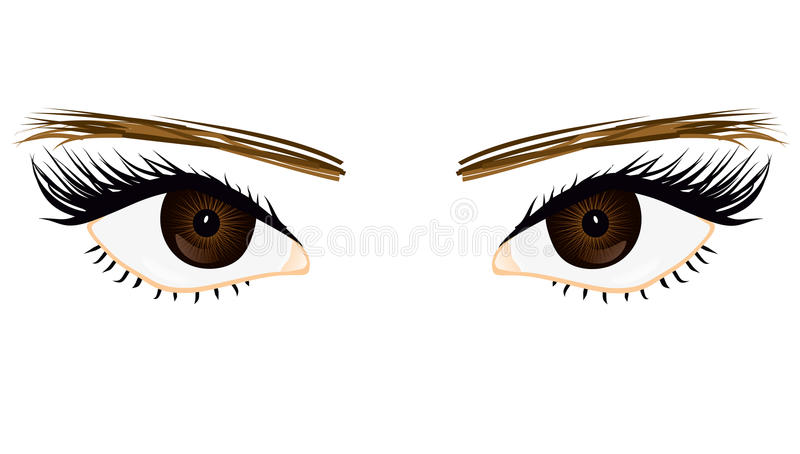 Download Her eyes stock vector. Image of layout, vector, long - 27197910